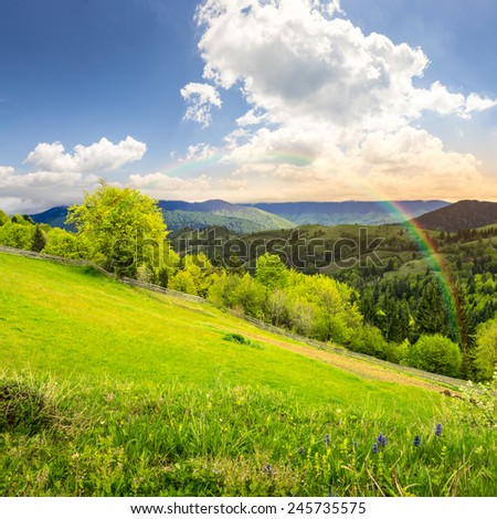 composite rural landscape. fence near the meadow and trees on the hillside. forest in fog on the mountain top in morning light with rainbow - stock photo