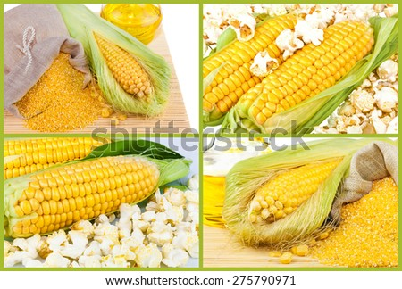 Composition from corn, oil and maize flour in flax sack on the mat isolated on white background, collage - stock photo