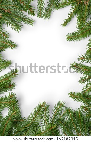 composition from fir twigs with shadow, on white background - stock photo