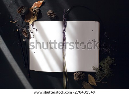 composition notebook, and dried plants with morning light - stock photo