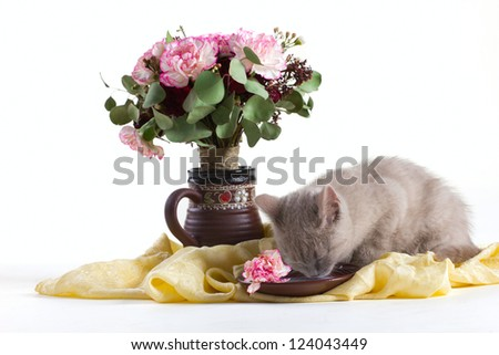 composition of a gray kitten, and bunch of flowers on silk isolated on white - stock photo