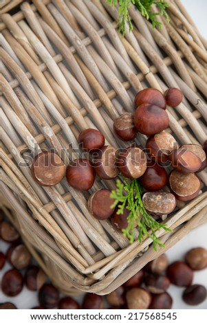 Composition of chestnuts and green plants on wicker basket.