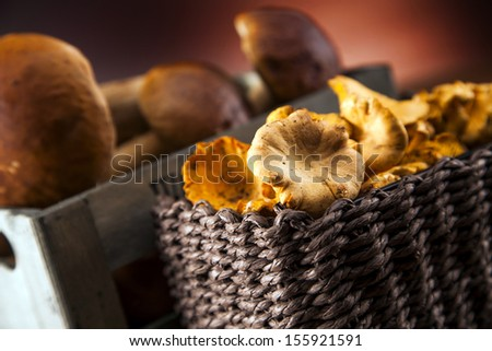 Composition of fresh mushrooms. fall food on wooden table