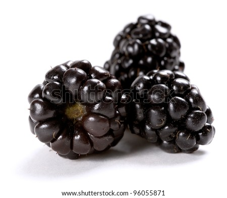 Composition of fresh ripe blackberries isolated on white background. Shallow depth of field. - stock photo