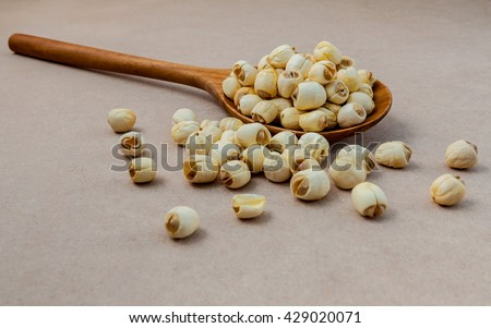 Composition of raw lotus seeds .The asian popular seed for food ,desserts and herbal medicine in wooden spoon on brown background. - stock photo