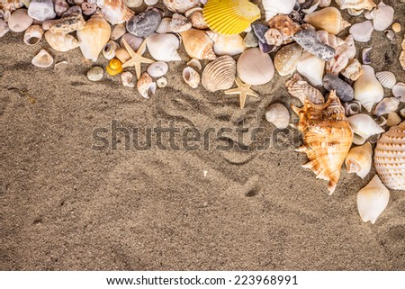 Composition of sand, shells, stones and starfish. - stock photo