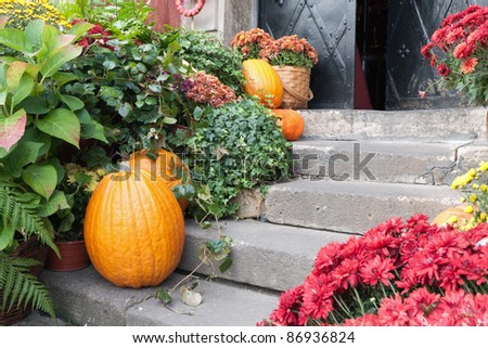 Composition on Halloween at the threshold - stock photo