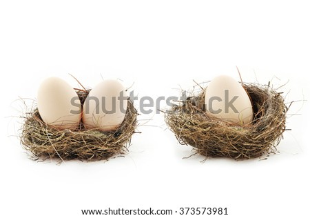 Composition with big eggs inside the small nests, isolated on white - stock photo