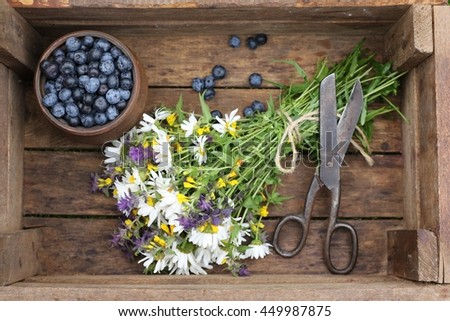 Composition with blueberries in the brown ceramic clay pot, jag, big rustic  vintage scissors, bunch bouquet of wildflowers in very old wooden dark box. Real scene in the garden. natural light shadows - stock photo
