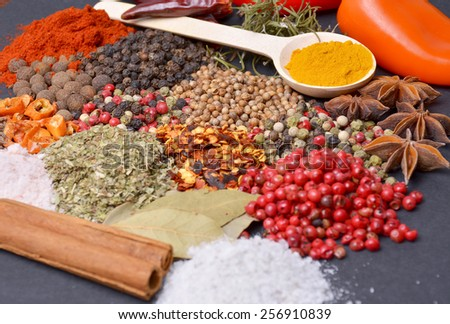 Composition with different spices and herbs - stock photo