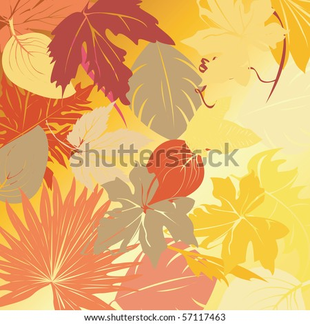 Compositions with autumn leaves