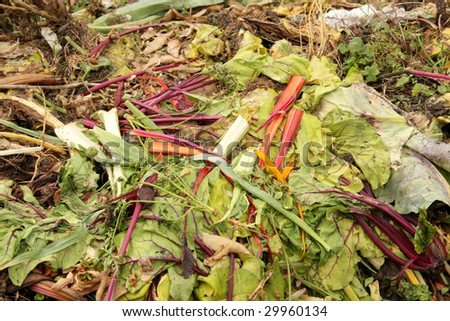 Compost Heap Made of Unused Vegetables in Recycle - stock photo