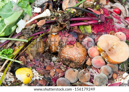 Composting pile of rotting kitchen fruits and vegetable scraps - stock photo