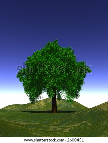 Computer-generated graphic depicting a tree during the Summer season (concept: growth)