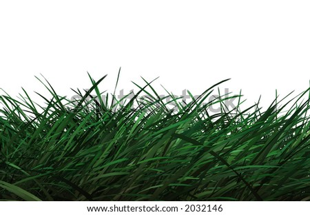 Computer generated grass on white background.