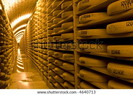 Comte cheese wheels in a cave waiting to be ripened