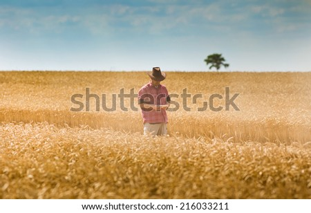 Conceived farmer walking in wheat field and looking at tablet - stock photo
