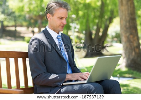 Concentrated businessman using laptop while sitting on park bench