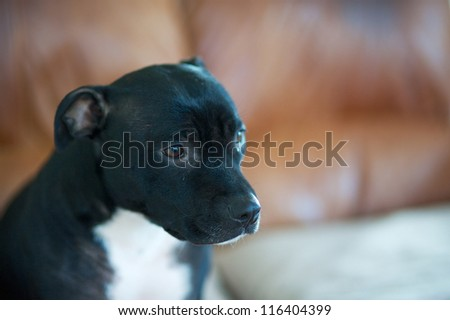 Concentration - stock photo