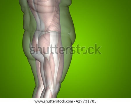 Concept, conceptual 3D illustration fat overweight vs slim fit diet with muscles young man green background, metaphor weight loss, body, fitness, fatness, obesity, health, healthy, male, dieting shape - stock photo