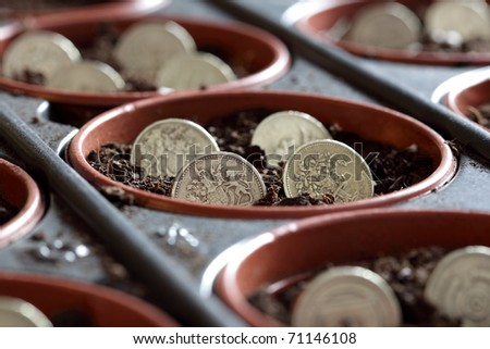 Concept for investment, savings and cultivating finance - stock photo