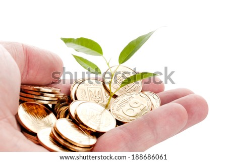 Concept for investments. Young sprout from a pile of coins.  - stock photo