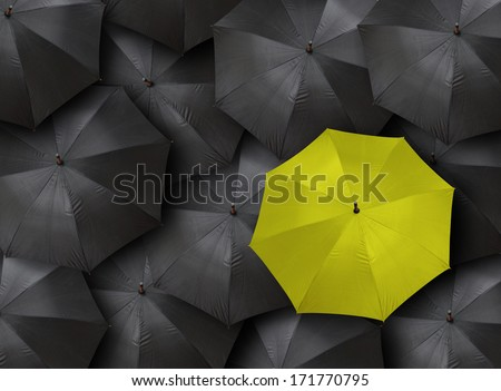 concept for leadership with many blacks and yellow umbrella  - stock photo