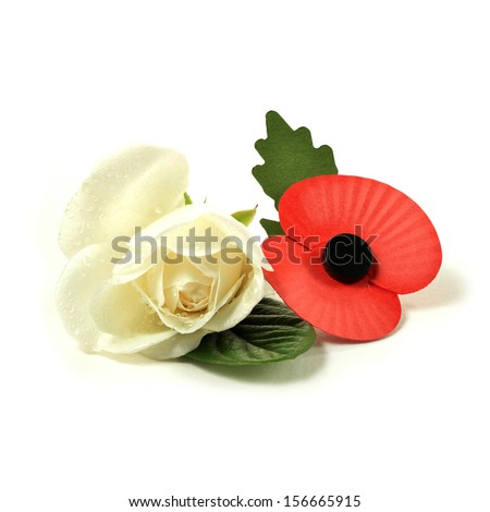 Concept image for Remembrance Sunday. A white rose for peace and an artificial red poppy worn to symbolize the fallen from past World Wars and other military conflicts around the world. Copy space. - stock photo