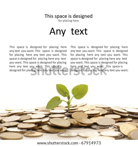 Concept of a plant and a lot of golden coins isolated on white background - stock photo