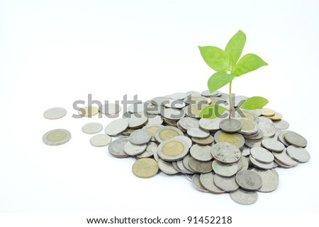 Concept of business growth - stock photo