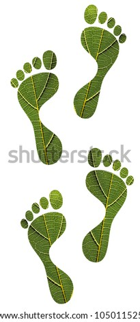 Concept of environmental conservation, green footprints, sustainable development, etc. created using macro image of a leaf with clipping path - stock photo