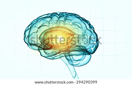 Concept of human intelligence with human brain on white background - stock photo