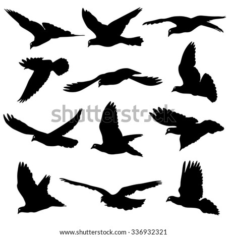 Concept of love or peace. Set of silhouettes of doves. illustration. - stock photo