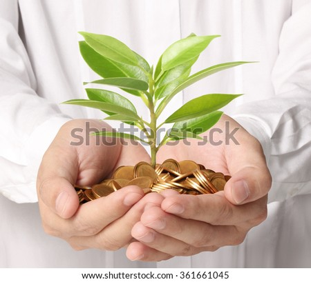 Concept of money growing from plant coins