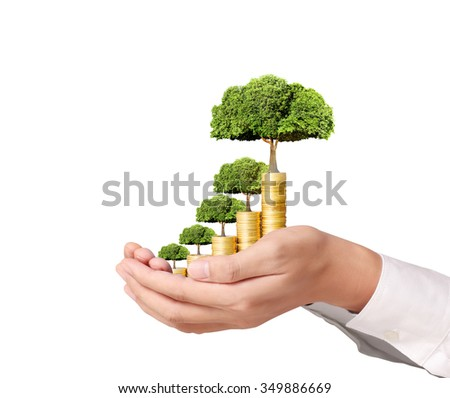 Concept of money growing from the coins - stock photo