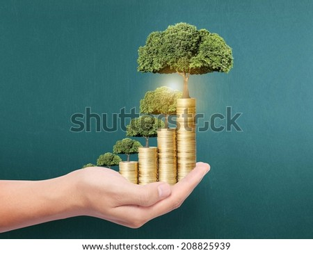Concept of money tree growing from coins  - stock photo
