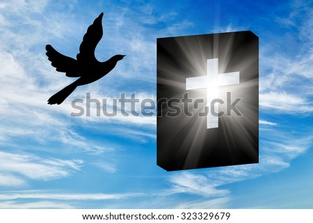 Concept of religion. Silhouette of the books of the Bible in the rays of light and a dove against a beautiful sky - stock photo