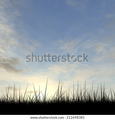 Concept or conceptual black grass or plant field or meadow silhouette in summer or spring evening over a sky at sunset with clouds background - stock photo