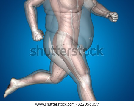 Concept or conceptual 3D fat overweight vs slim fit diet with muscles young man blue gradient background metaphor weight loss, body, fitness, fatness, obesity, health, healthy, male, dieting or shape - stock photo