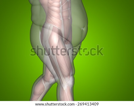 Concept or conceptual 3D fat overweight vs slim fit diet with muscles young man green gradient background, metaphor weight loss, body, fitness, fatness, obesity, health, healthy, male, dieting, shape - stock photo