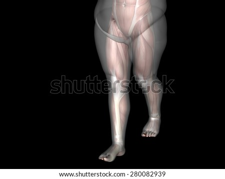 Concept or conceptual 3D fat overweight vs slim fit diet with muscles young man isolated on background, metaphor weight loss, body, fitness, fatness, obesity, health, healthy, male, dieting or shape - stock photo