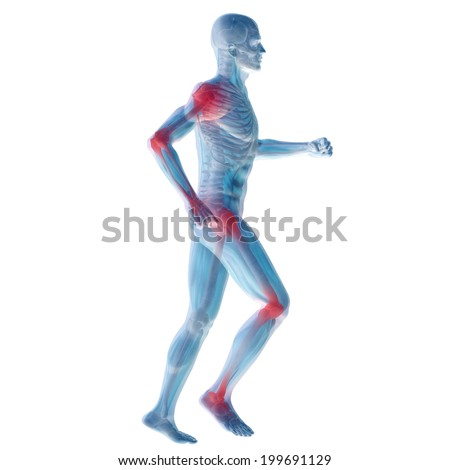 Concept or conceptual 3D human anatomy body with pain isolated on white background as a metaphor to health, medicine, medical, biology, osteoporosis, arthritis, joint, disease, inflammation or ache - stock photo