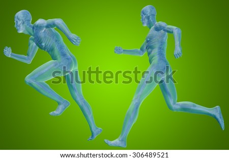 Concept or conceptual 3D human man or male skeleton anatomy transparent body over green gradient background metaphor to medical, health, science, biology, bone, joint, healthy, structure or healthcare