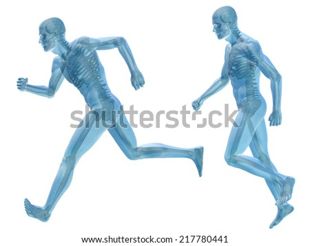 Concept or conceptual 3d male or man running over a black background as a metaphor for anatomy, body, biology, medicine, muscle, bones, muscular, anatomical, science, education, sport or x-ray - stock photo