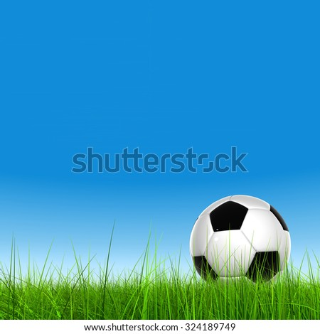 Concept or conceptual 3D soccer ball in fresh green summer or spring field grass with a blue sky background metaphor to sport, goal, competition, play, team, fun, stadium, meadow, activity soccerball