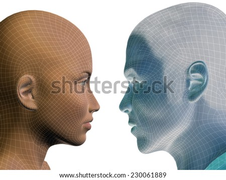 Concept or conceptual 3D wireframe human male or female head isolated on white background, metaphor to technology, cyborg, digital, virtual, avatar, model, science, love, relation or future - stock photo