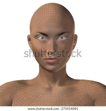 Concept or conceptual 3D wireframe young human female or woman face or head isolated on background - stock photo