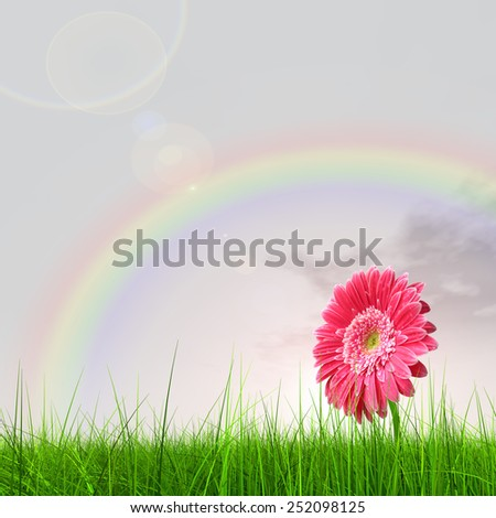 Concept or conceptual green fresh summer or spring grass field and a flower over a blue sky background - stock photo