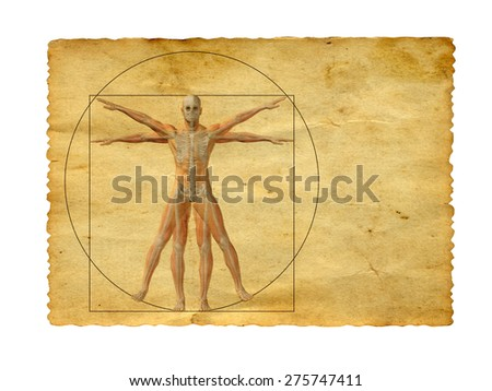 Concept or conceptual vitruvian human body drawing on old paper background - stock photo