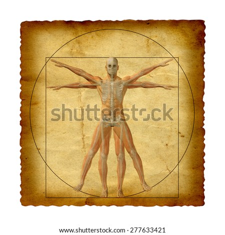 Concept Conceptual Vitruvian Human Body Drawing Stock Illustration ...